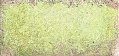 Tempo Moss 11x22,5                                                              (N22642)